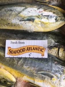 Mahi Seafood Atlantic