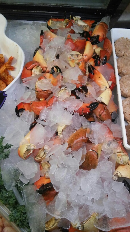 stone-crab-claws-seafood-atlantic-google-yahoo