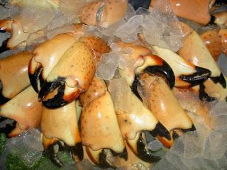 stone-crab-google-yahoo-image