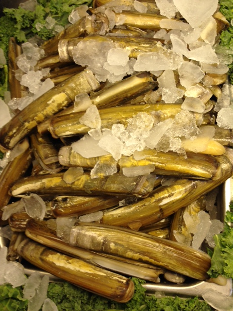 Razor Clams Seafood Atlantic