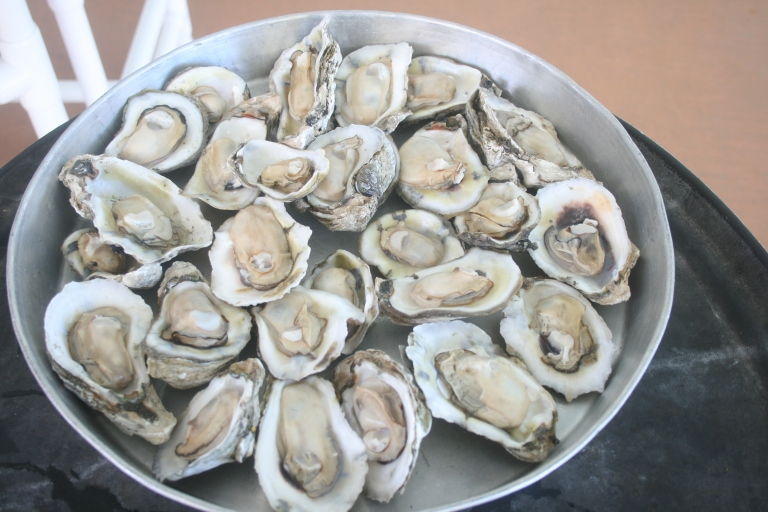oysters at seafood atlantic.JPG
